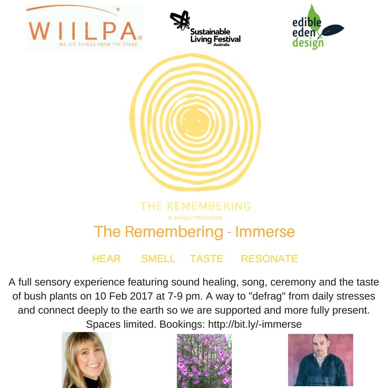 The Remembering - Immerse - 10 Feb 2017 - held as part of the National Sustainable Living Festival 2017