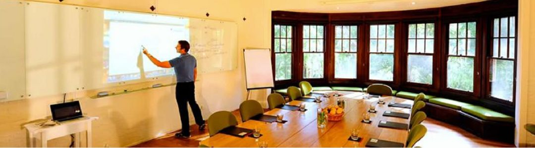 """wiilpa-workshop-new models for """"thrivability"""""""