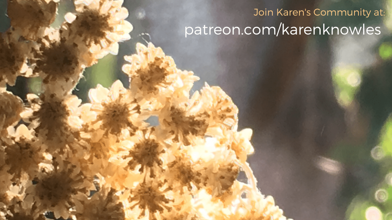 Join Karen's community at patreon.com/karenknowles